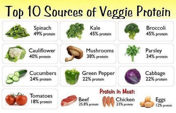 vegetables high on protein