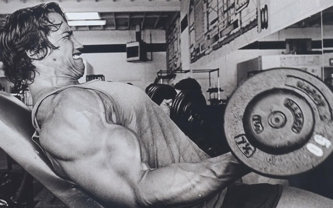 Arnold Schwarzenegger Workout Images