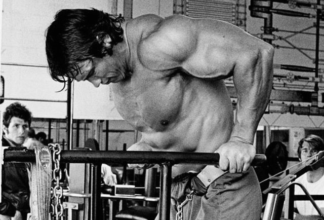 Arnold Schwarzenegger Workout Pictures