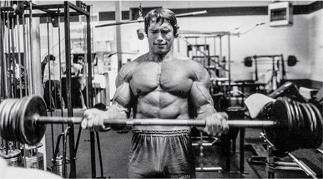Arnold schwarzenegger bodybuilding workout routine and diet plan arnold schwarzenegger workout malvernweather Choice Image