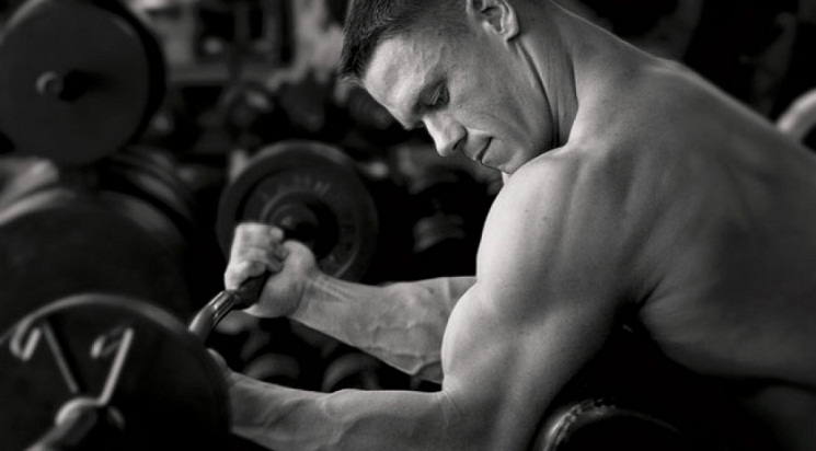 John Cena Arm Workout