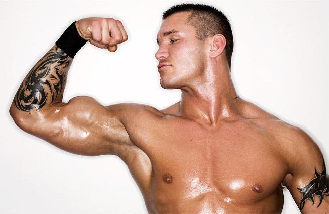 Randy Orton Biceps