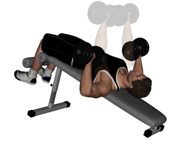 Awesome Decline Dumbbell Bench Press Pictures Video Guide And Ibusinesslaw Wood Chair Design Ideas Ibusinesslaworg