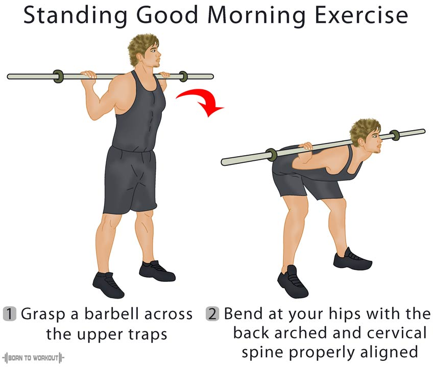 How to Good Mornings Exercises