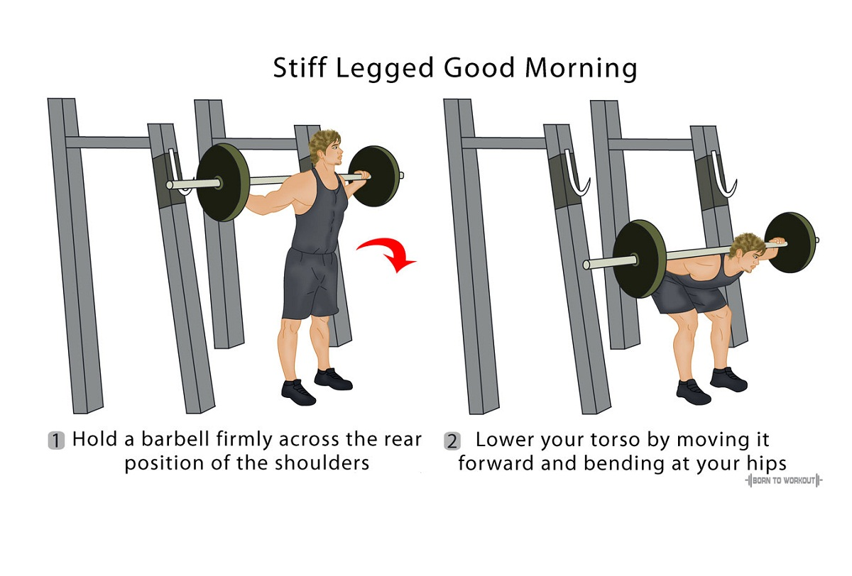 Good Morning Exercise: How to do, Form, Video, Pictures