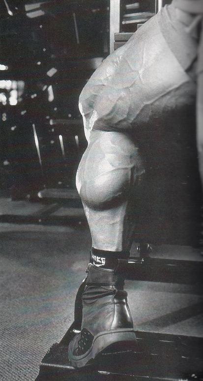 Dorian Yates Calves