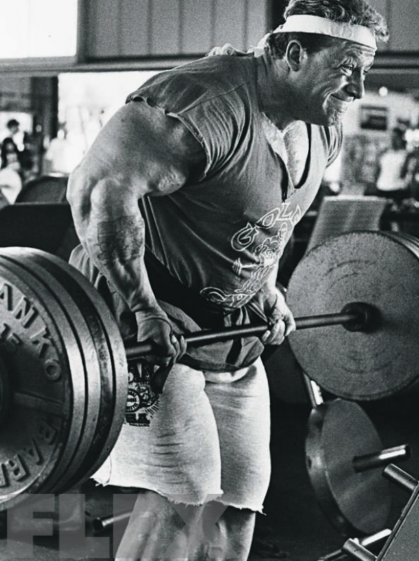 Dorian Yates Workouts