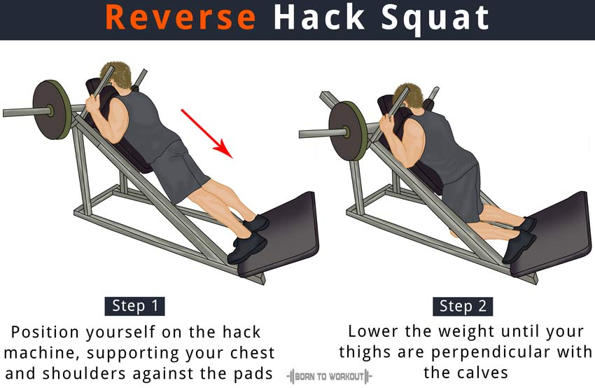 Reverse Hack Squat with Machine: How to Do, Benefits and ...
