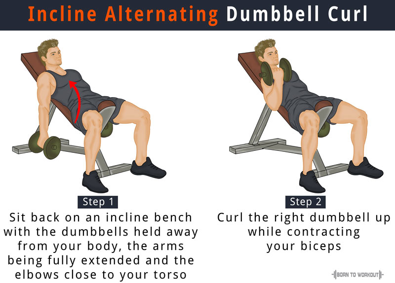 Incline Dumbbell Curl: How to do, Benefits, Forms, Video