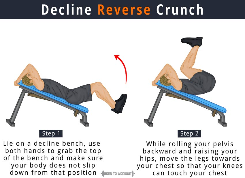 Decline Reverse Crunch on Bench: How to do, Benefits, Pictures