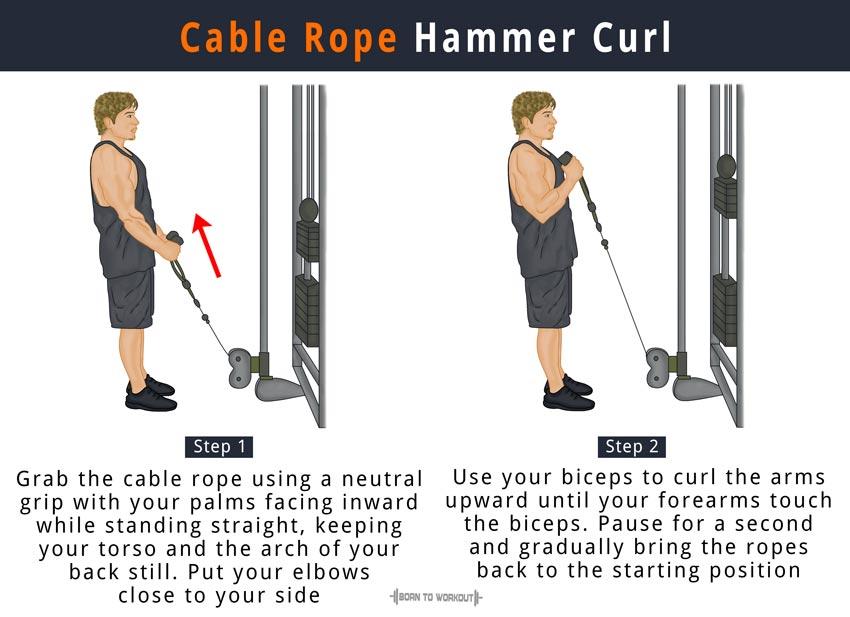 Get Bigger Biceps With This Bicep Crushing Workout - WeGrowMuscle