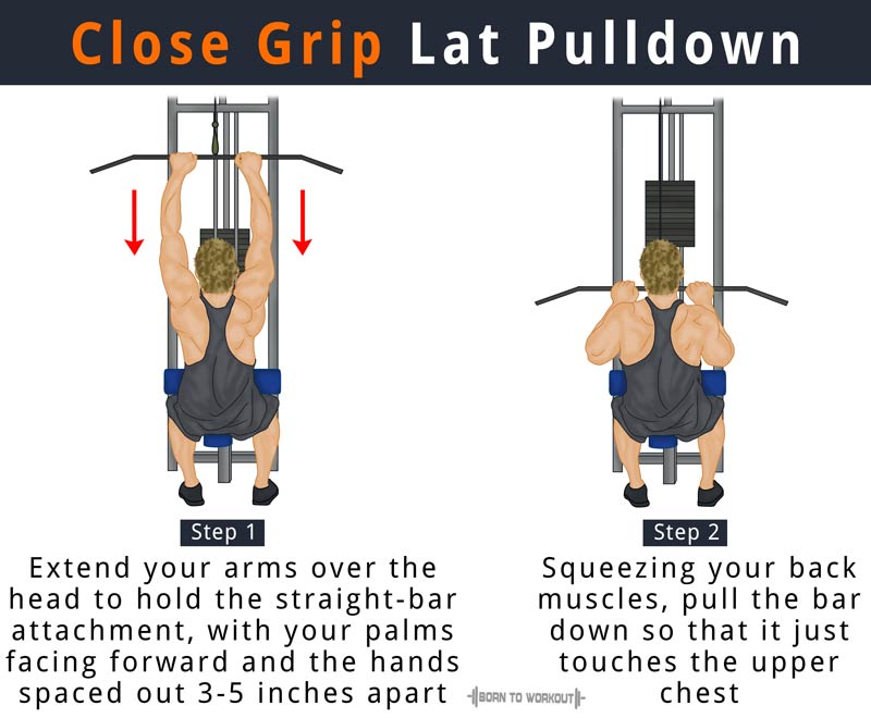 Close Grip Lat Pulldown Muscles Worked Alternative Form Benefits
