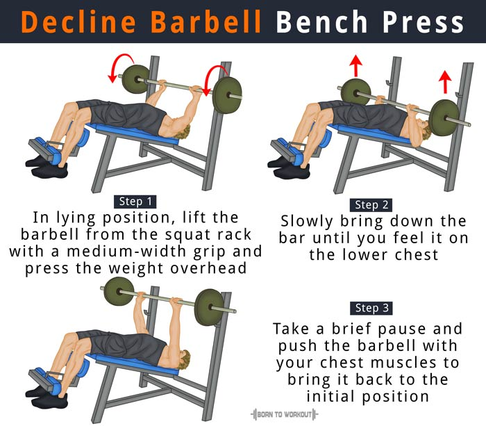 The Difference Between A Chest Press Machine A Bench: Decline Barbell Bench Press: Forms, Benefits, Muscles