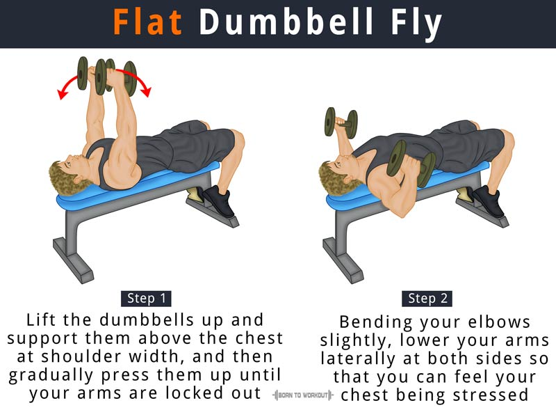 Flat Dumbbell Fly What Is It How To Do Muscles Worked