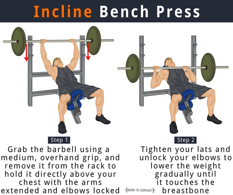 Incline Bench Press: How to do, Benefits, Forms, Muscles ...