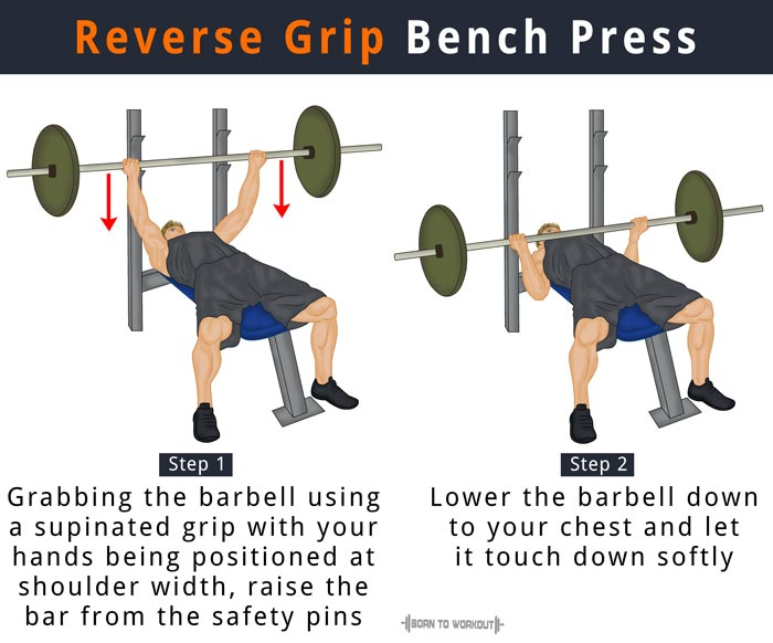Reverse Grip Bench Press How To Do Muscles Worked Other