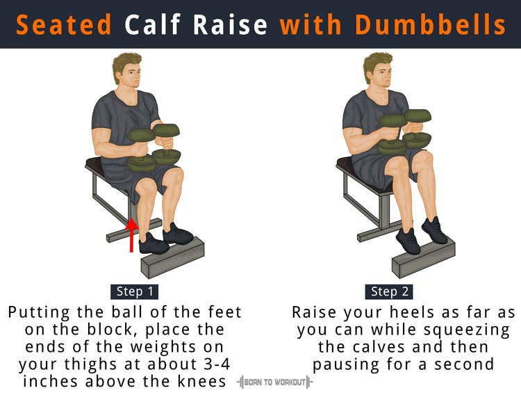 seated calf raises at home