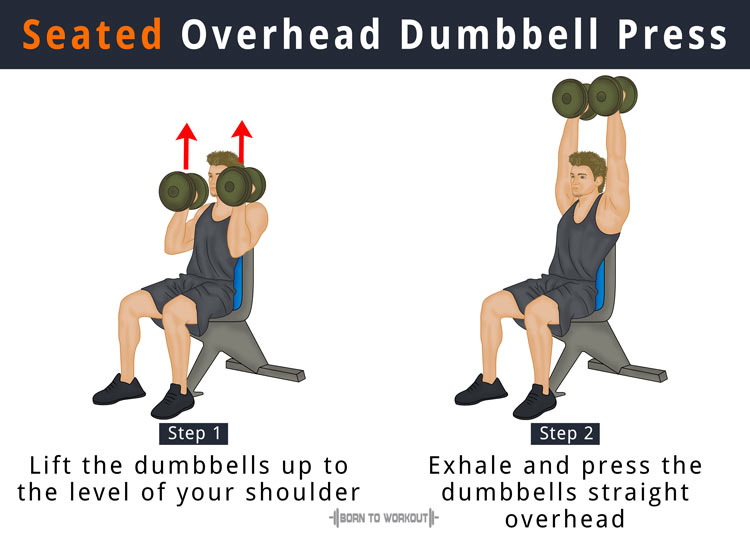 Dumbbell Overhead Press What Is It How To Do Benefits