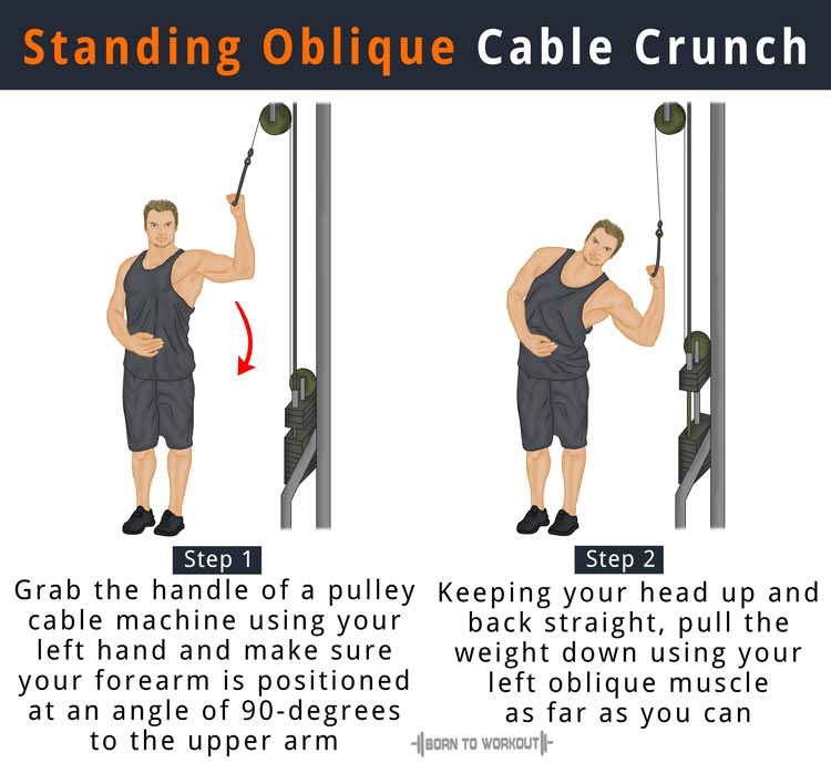 What are Standing Oblique Crunches, How to do, Muscles ... Oblique Exercises Cable