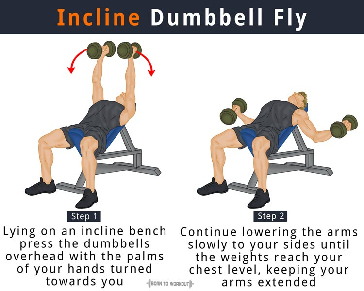 Dumbbell Flys: What is it, How to do, Muscles Worked