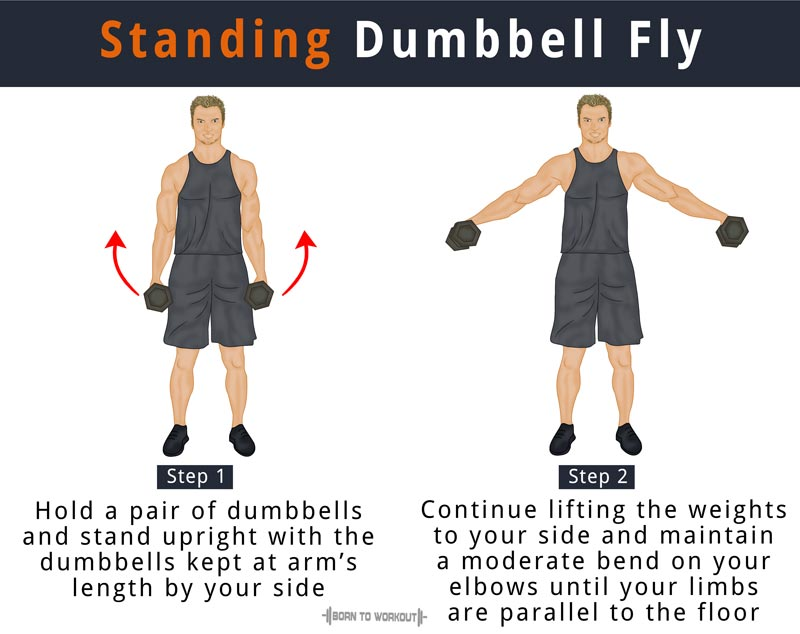 How To Do Standing Dumbbell Flys Side Lateral Raises